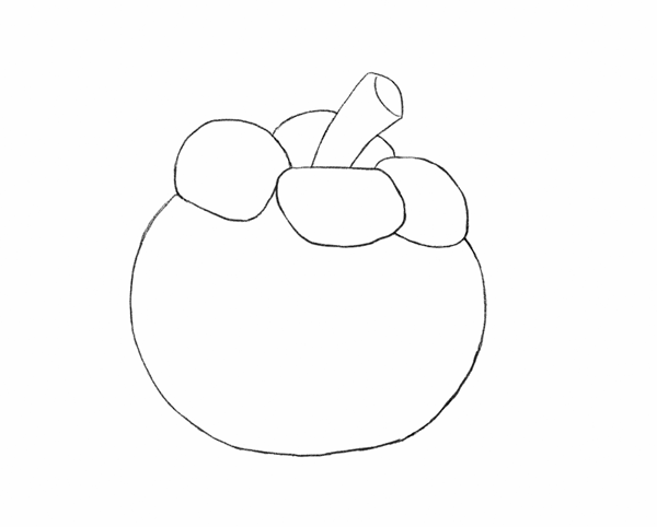 mangosteen coloring pages - photo#14